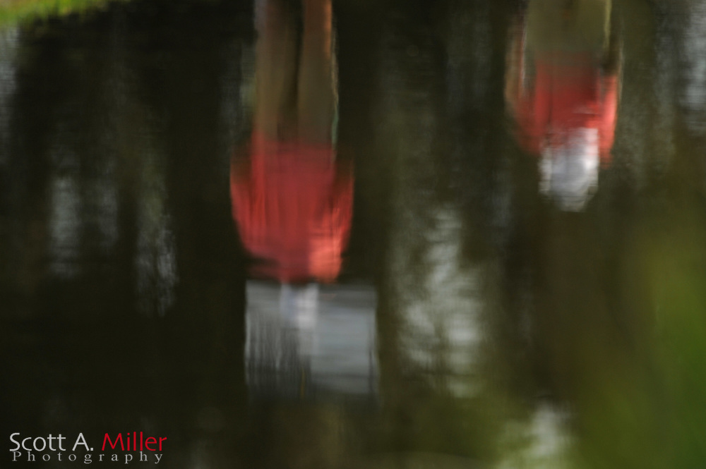 Volunteers are relfected in a pond during the third round of the Players Championship at the TPC Sawgrass on May 12, 2012 in Ponte Vedra, Fla. ..©2012 Scott A. Miller..
