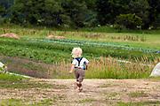 Wild Shepherd Farm in Athens, Vermont