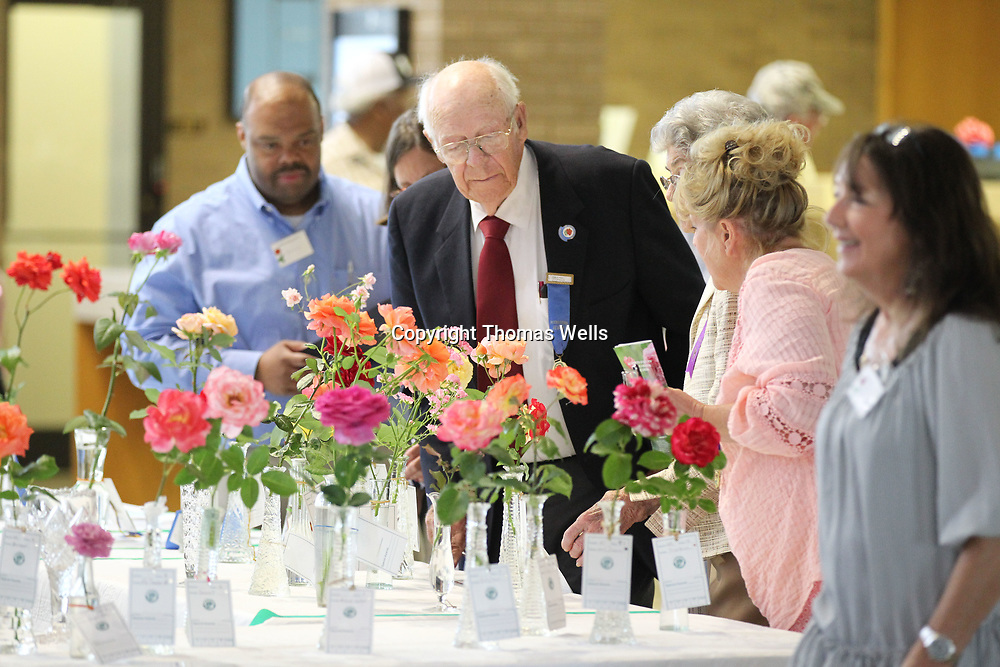 Northeast Mississippi Rose Society Rose Show judge James Moser, center, helps ick winners during Thursday's annual Rose show at the Renasant bank in Tupelo.