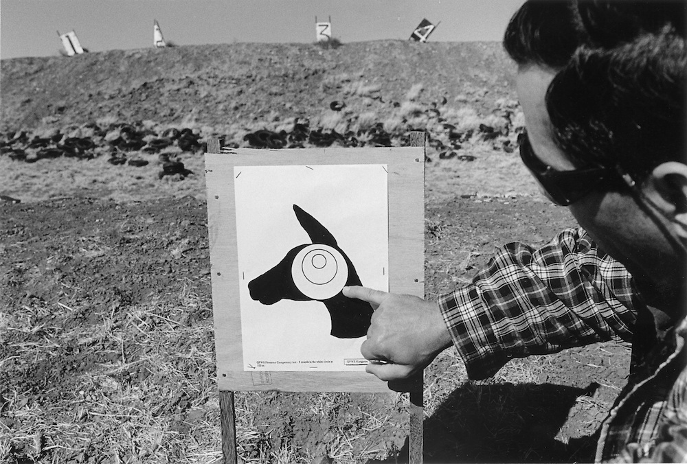 """""""Kangaroo Harvesting In Australia""""..Professional Kangaroo shooters need to head shoot within the circles shown  on this target with a centre fire rifle as a requirement for their animals to be accepted at human consumption meatworks across Australia. This is a target that the MWGH, Queensland Macropod and wild game harvesters  association uses when testing  a shooters ability to hit the Kangaroo in the head. ."""