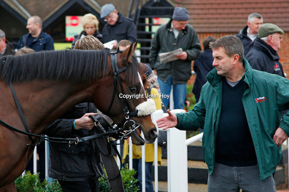 Boris The Bold in the parade ring