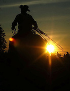 One of the Excalibur Rodeo cowboys gets ready for the final go round of bull riding as the sun sets behind a group of spectators at the 2009 Emmet-Charlevoix County Fair.