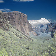 Yosemite Valley is known around the world for its beauty.  El Capitan can be seen on the left and Half Dome on the right in the distance. The valley Is located on the western slope of the Sierra Nevada mountains and stretches for 7 miles (11 km). More than half a dozen creeks create waterfalls into the valley falling from 3000-4000 feet (900-1200 m) above the valley floor, which is 4000 ft (1200 m) above sea level. The streams combine into the Merced River, which flows into the San Joaquin Valley. The valley floor holds both forest and large open meadows. ..This is a digital combination of an infrared image and a visible color image.  The color picture is used to colorize the infrared image giving a foreign and new perspective.  Plants and trees reflect more infrared light and appear brighter in images while the sky reflects less making it darker.