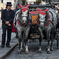 Tourists can also explore the city by horse drawn carriage.