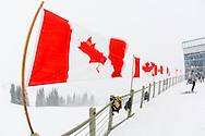 Canadian Flags strain in the winter wind in Whistler, BC