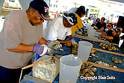 Clam Shucking Competition, Bi-Valve Festival, Delaware Bay, South Jersey, NJ