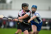 24/09/2016, Intermediate Camogie Final at Trim.<br /> Boardsmill vs Dunderry<br /> Grainne Dowd (Dunderry) & Caolanna Foley (Boardsmill)<br /> Photo: David Mullen /www.cyberimages.net / 2016<br /> ISO: 800; Shutter: 1/1328; Aperture: 4; <br /> File Size: 2.7MB<br /> Print Size: 8.6 x 5.8 inches