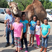 (Floyd Ingram / Buy at photos.chickasawjournal.com)<br /> Frank the camel was a big hit at the Houston Carnegie Library summer reading program June 16. Shown with Frank and his trainer James Godby are, from left, Skyler Guthrie, Ceana Knox, Alecia Pulliam, Miriam Vazquez and Vivian Vazquez.