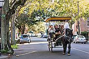 Horse drawn carriage tour along Meeting Street in historic Charleston, South Carolina.