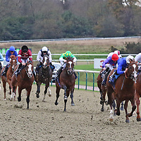 Lingfield 25th November