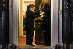 © Licensed to London News Pictures. 16/01/2019. London UK. A lady cleans the front door of number 10 Downing Street this morning after Theresa May's brexit deal was voted down in Parliament last night. Photo credit: Andrew McCaren/LNP
