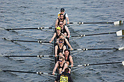 Crew: 205  Furnivall A<br /> <br /> Head of the River Race (HoRR) 2019<br /> <br /> To purchase this photo, or to see pricing information for Prints and Downloads, click the blue 'Add to Cart' button at the top-right of the page.
