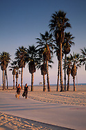 Two women walking on palm tree lined path next to sand beach on coast at Santa Monica, California