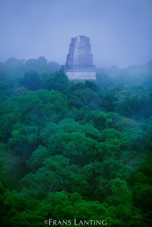 Mayan temple rising above rainforest, Tikal National Park, Guatemala