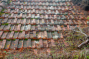 close up of a roof with old shingles