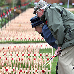 © under license to London News Pictures.  09/11/10 ..The Royal British Legion Wootton Bassett Field of Remembrance, Lydiard Park, Wiltshire, where members of the public read the names on crosses dedicated to service personnel who have lost their lives in battles.