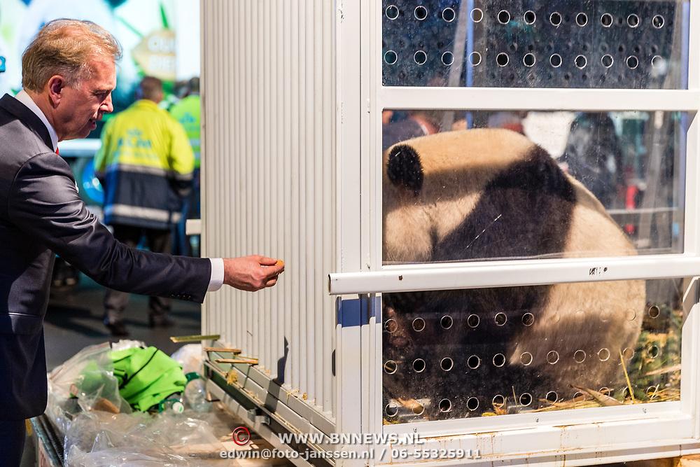 NLD/Amsterdam/20170412- Aankomst reuzenpanda's WU WEN en XING YA in Nederland,  Marcel Boekhoorn voert de panda