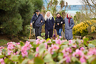 EMBARGOED 00:01 Wednesday 22nd February; 2017.<br /> <br /> Residents and carers from Chestnut View care home near the seafront in Southsea, Hampshire. They are amongst the first of 100,000s of old and vulnerable people to enjoy new Out and About excursions after Oomph! announces nationwide expansion plans today (Wednesday 22nd February).<br /> Out and About tackles a lack of outings for people in care settings due to social care funding cuts. Innovative model offers economies of scale on excursion planning, transport and conductors across care settings in an area.<br /> 80 Out and About minibuses will hit the road in first year thanks to &pound;1.5million investment from Mike Parsons, Care and Wellbeing Fund and Nesta Impact Investments.<br /> Photograph by Christopher Ison &copy;<br /> 07544044177<br /> chris@christopherison.com<br /> www.christopherison.com