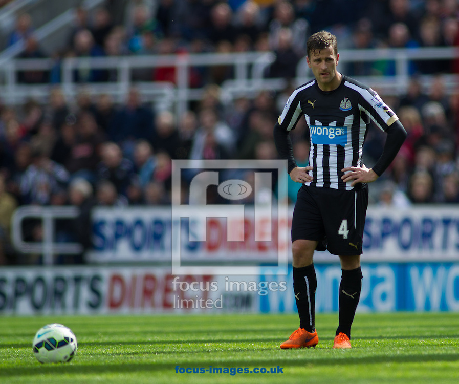 Ryan Taylor of Newcastle United  during the Barclays Premier League match at St. James's Park, Newcastle<br /> Picture by Stephen Gaunt/Focus Images Ltd +447904 833202<br /> 09/05/2015