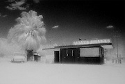 Malts Shakes.  A small food shack recorded in bright daylight with infra red film along Hwy 29 in Morongo Valley, Mojave Desert.