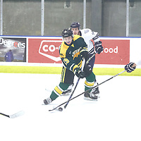 1st year forward, Tanner Campbell (29) of the Regina Cougars during the Men's Hockey Home Game on Sat Dec 01 at Co-operators Center. Credit: Arthur Ward/Arthur Images