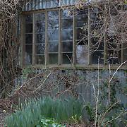 Gardening Hut, Cornwall