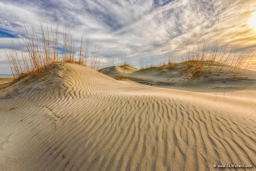 Sand dunes at the beach in Carova North Carolina on the Outer Banks.