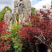Asia, China, Yunnan, Kunming.  The Stone Forest natural wonder.