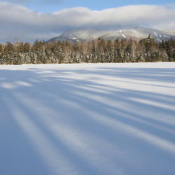 The shadows of white pines on Little Lyford Pond in Maine's Northern Forest.  Near Greenville.  Baker Mountain.