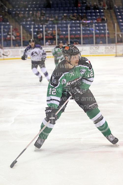 15 November 2013: Jason Cohen. Louisiana IceGators at Bloomington Thunder Southern Professional Hockey League (SPHL) at the U.S. Cellular Coliseum in Bloomington Illinois