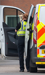 © Licensed to London News Pictures. 28/05/2018. Gloucester, UK. A small dog thought to be a Chihuahua is carried by Police from the scene of a double murder in Dexter Way.  A 31 year old woman and 11 year old girl found dead at a house, and 28 year old man has been arrested on suspicion of murder. Photo credit: Simon Chapman/LNP