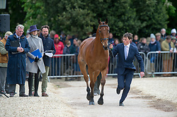 Watson Sam, (IRL), Horseware Bushman<br /> First Horse Inspection - Mitsubishi Motors Badminton Horse Trials <br /> Badminton 2015