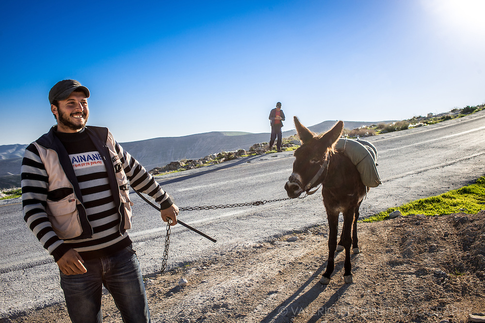 Two men in a desolate area of West Bank walk with their donkey on a sunny winter day.