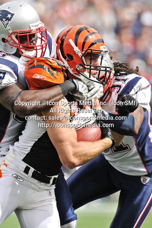 12 September 2010:Wide Receiver Jordan Shipley #11 tries to drag Safety's Brandon Meriweather #31 and James Sanders #36 down the field after making a nice catch during the Bengals game against the Patriots at Gillette Stadium in Foxboro, MA  ***Editorial Use Only*****