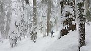 Snowshoe to Commonwealth Basin, Snoqualmie Pass, Washington, USA. Jan 8, 2016. Shot on Samsung Galaxy Note 5 SmartPhone.