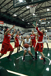 10 January 2015:   during an NCAA women's division 3 CCIW basketball game between the Carthage Reds and the Illinois Wesleyan Titans in Shirk Center, Bloomington IL