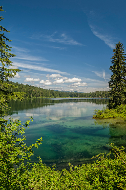 Clear Lake, Willamette National Forest, Cascade Mountains, Oregon.