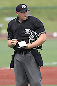 Dave Fields baseball umpire photos