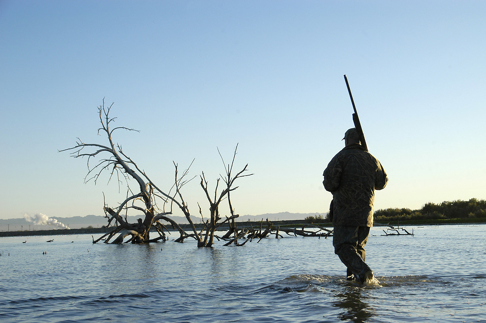 Duck Hunter looking for waterfowl in Southern California.