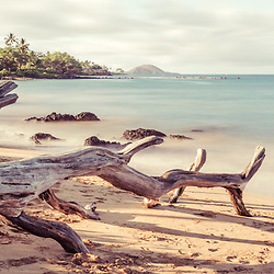 Mōkapu Beach panorama photo in Wailea Makena Maui Hawaii with fallen tree driftwood. Panoramic photo ratio is 1:3. Copyright ⓒ 2019 Paul Velgos with All Rights Reserved.