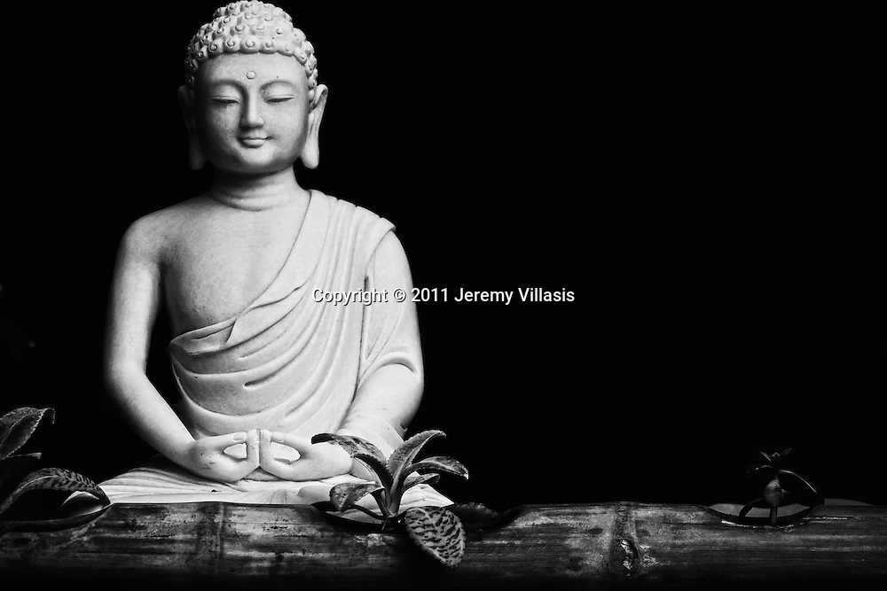 Buddha on display at a shop window