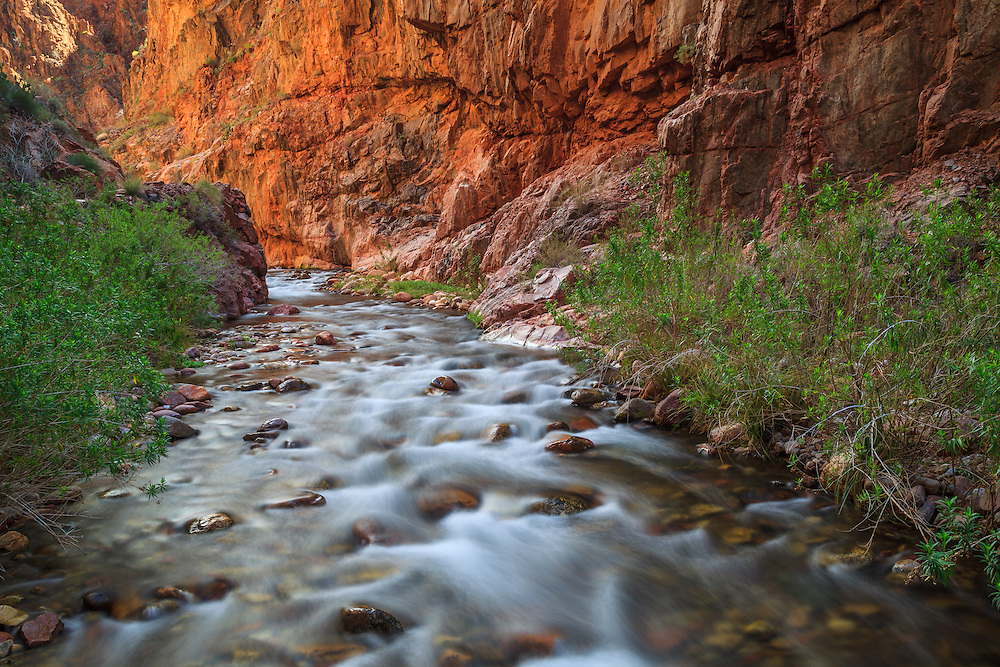 Bright Angel Creek in 'The Box' near Phantom Ranch. Grand Canyon National Park.
