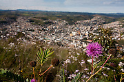 Pocos de Caldas_MG, Brasil...Flores e vista panoramica de Pocos de Caldas ao fundo...Flowers and the panoramic view of Pocos de Caldas in the background...Foto:LEO DRUMOND / NITRO
