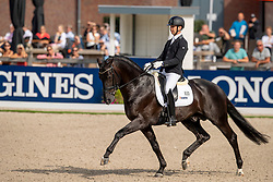 Veeze Bart, NED, Imposantos<br /> World Championship Young Dressage Horses - Ermelo 2019<br /> © Hippo Foto - Dirk Caremans<br /> Veeze Bart, NED, Imposantos