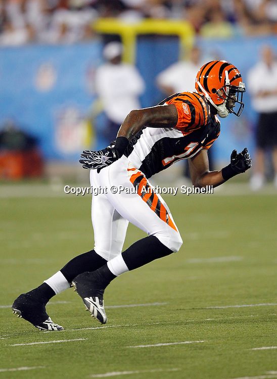 Cincinnati Bengals wide receiver Maurice Purify (14) goes out for a pass during the NFL Pro Football Hall of Fame preseason football game between the Dallas Cowboys and the Cincinnati Bengals on Sunday, August 8, 2010 in Canton, Ohio. The Cowboys won the game 16-7. (©Paul Anthony Spinelli)