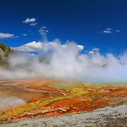 Grand Prismatic Steaming Geyser Pool - Cyanobacteria - Yellowstone National Park