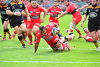 Steffan ARMITAGE - 05.04.2015 - Toulon / Londres Wasps - 1/4Finale European Champions Cup<br />
