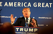 Republican presidential candidate Donald Trump gestures while speaking at a town hall meeting at the Atkinson Country Club in Atkinson, N.H., Monday, Oct. 26, 2015.  (AP Photo/Cheryl Senter)