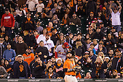 San Francisco Giants fans celebrate after San Francisco Giants first baseman Brandon Belt (9) catches a pop fly against the St. Louis Cardinals at AT&T Park in San Francisco, Calif., on September 16, 2016. (Stan Olszewski/Special to S.F. Examiner)