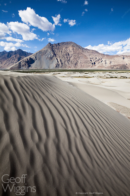Sand dunes in the deserts of Hunder, Ladakh, Northern India